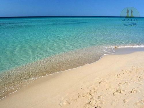 spiaggia posto vecchio7