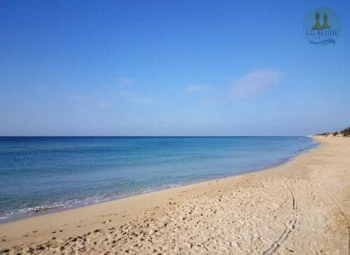 spiaggia posto vecchio3
